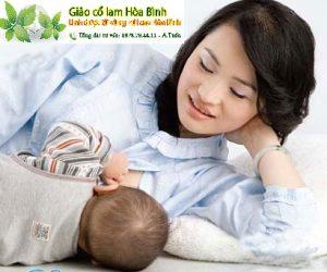 Giảo cổ lam giúp giảm cân hiệu quả cho phụ nữ sau sinh