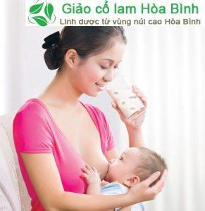 Phụ nữ đang cho con bú vẫn duòng đuọc trà Giảo cổ lam bình thường