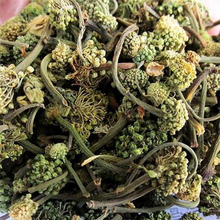 Hoa tam that bao nhieu tien 1kg