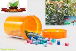 Sử dụng thuốc tây điều trị Ung thư