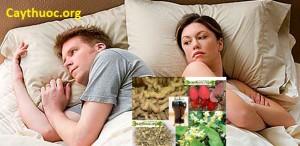 Cây thuốc điều trị xuất tinh sớm