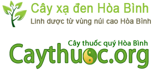 hop-nhat-cao-xa-den-va-caythuoc-org