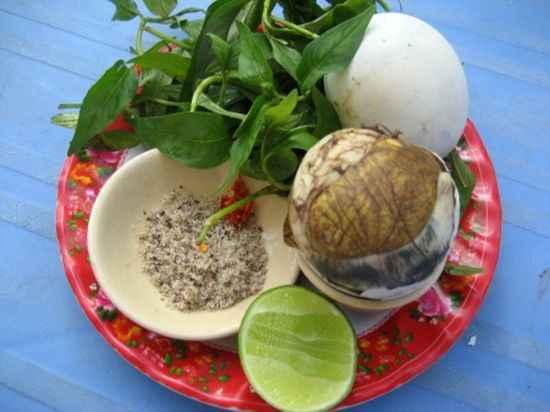 rau răm ăn trứng vịt lộn