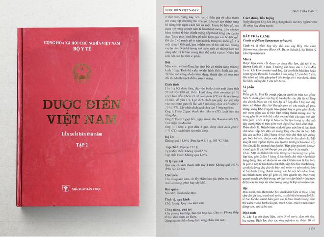 Dược điển Việt Nam ghi chép về cây dây thìa canh