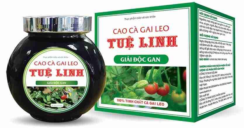 Cao cà gai leo Tuệ Linh