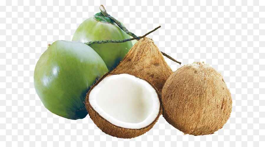 Quả dừa, cùi dừa hay cơm dừa