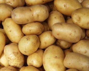 Cộng dụng của củ khoai tây