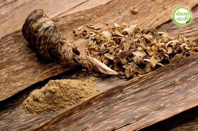 Kết quả hình ảnh cho kyx thuật cấy tạo trầm hương