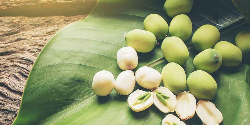 Tác dụng của hạt sen