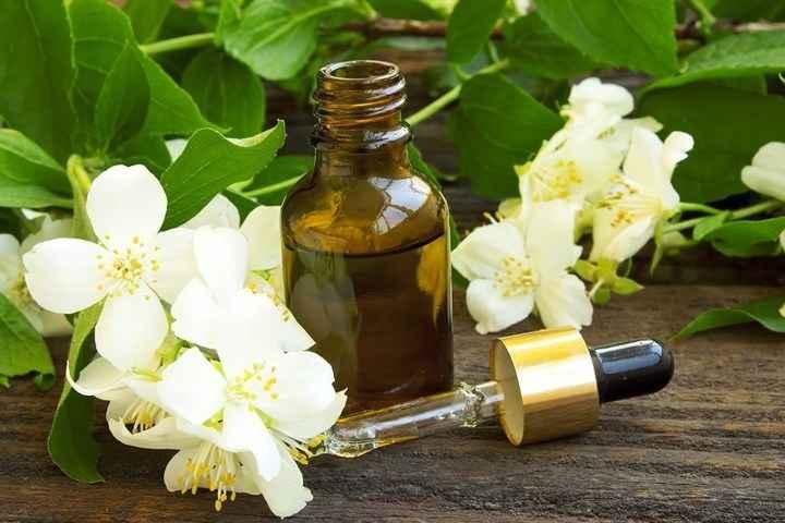 Hoa bưởi và tinh dầu hoa bưởi