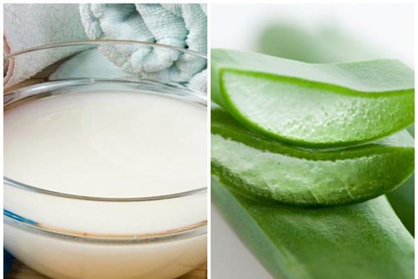 Chế độ ăn và làm đẹp với Mặt nạ dưỡng da bằng nha đam và nước vo gạo
